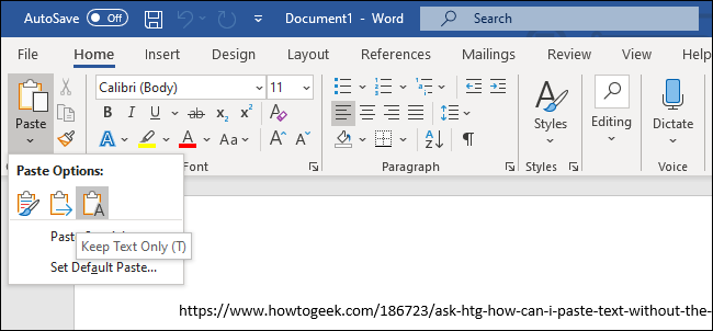 "The ""Keep Text Only"" option for pasting text in Microsoft Word."