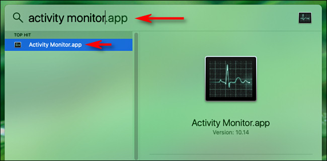 "Type ""Activity Monitor,"" and then press Enter."